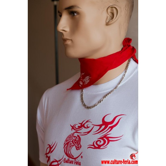 t-shirt festayre tatou homme